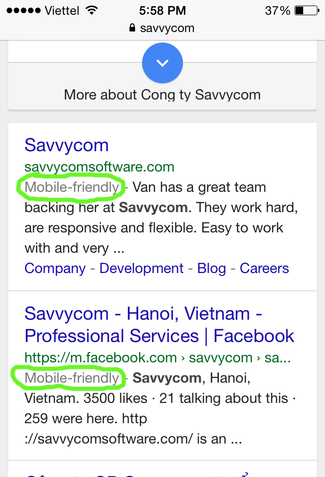 savvycom-search on mobile friendly