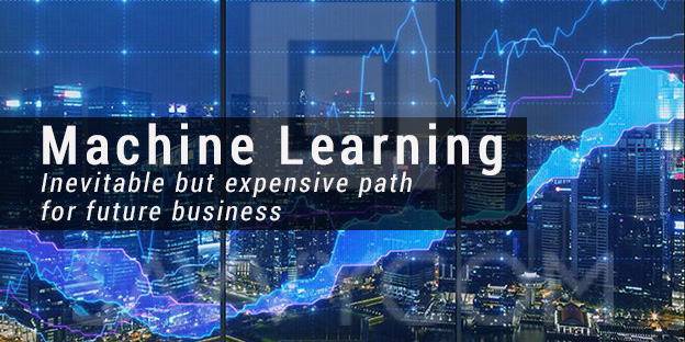 Machine Learning: Inevitable but Expensive Path for Future Business