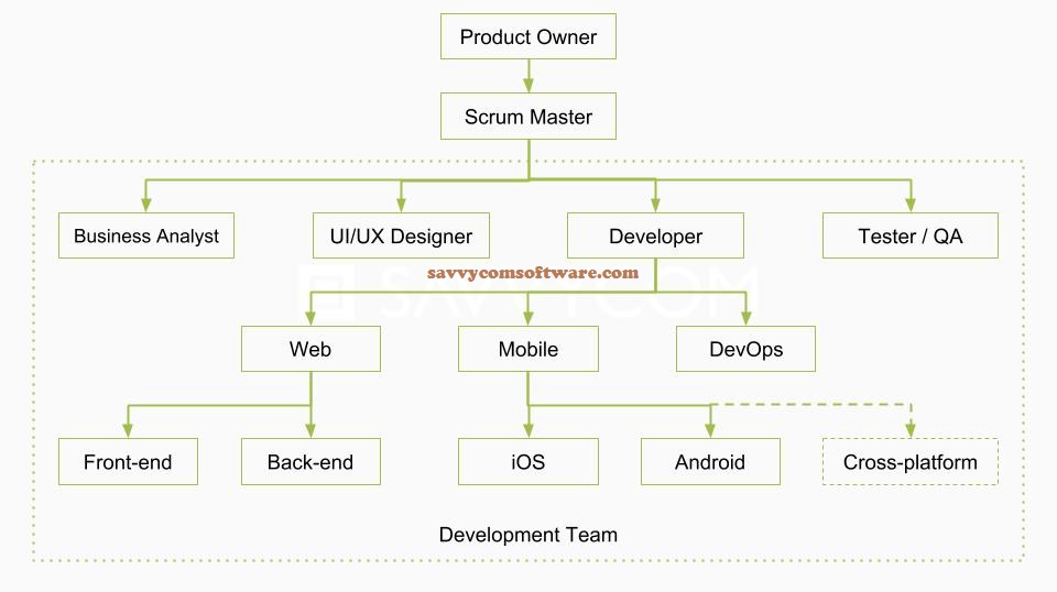 Building an Effective Software Development Team: A Complete Guide by Savvycom