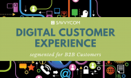 DCX 101 – Digital Customer Experience Segmented For B2B Customers